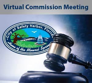Virtual Commission Meeting Graphic Link to Instructions