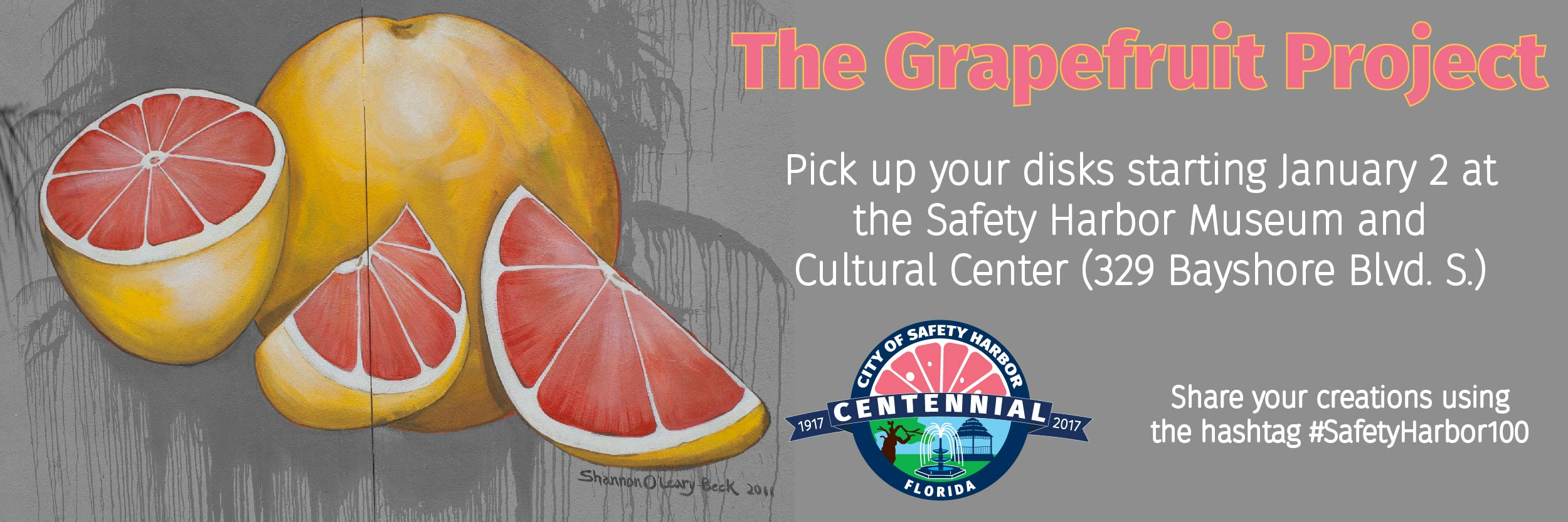 Grapefruit Project Web Banner